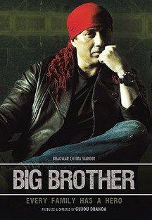Big Brother online