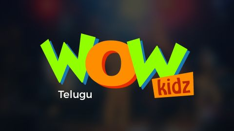 Telugu TV Channels | Telugu TV Online | Telugu News Live